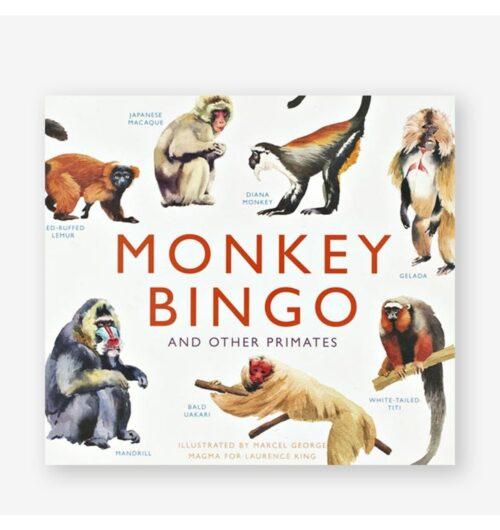 בינגו, קופים, משחק שולחן, אנגלית,